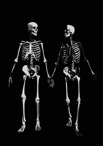 A couple of skeleton on dark BG