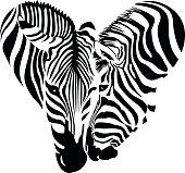 Couple zebra head in heart shape.