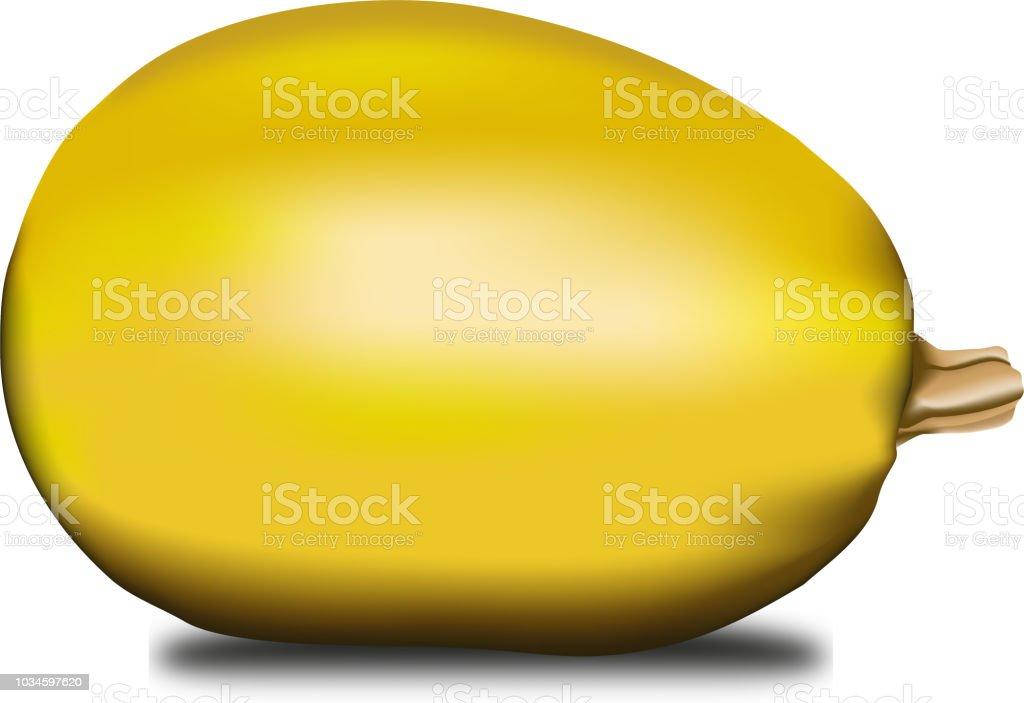 courge jaune vetor - Illustration vectorielle