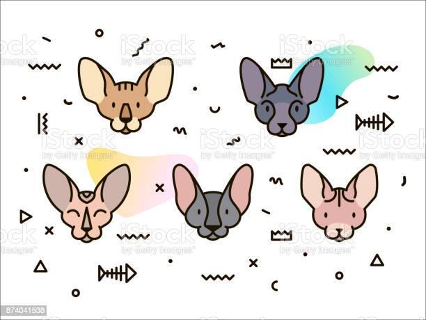 Cover design with cats and geometric shapes vector id874041538?b=1&k=6&m=874041538&s=612x612&h=hybmds2fe60wkdktdhz4baxxhjdzbomdiuoh9j1q5im=