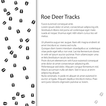 Cover Design with Traces of Forest Animal