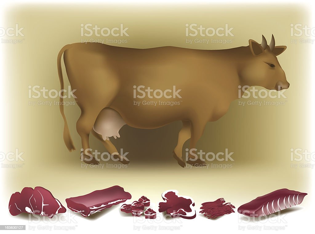 Cow and beef. royalty-free stock vector art