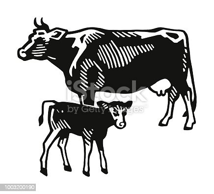 istock Cow and Calf 1003200190