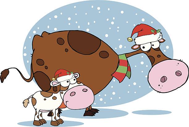 kuh und kalbsleder in santa hüte mit hintergrund - lustige kuh bilder stock-grafiken, -clipart, -cartoons und -symbole