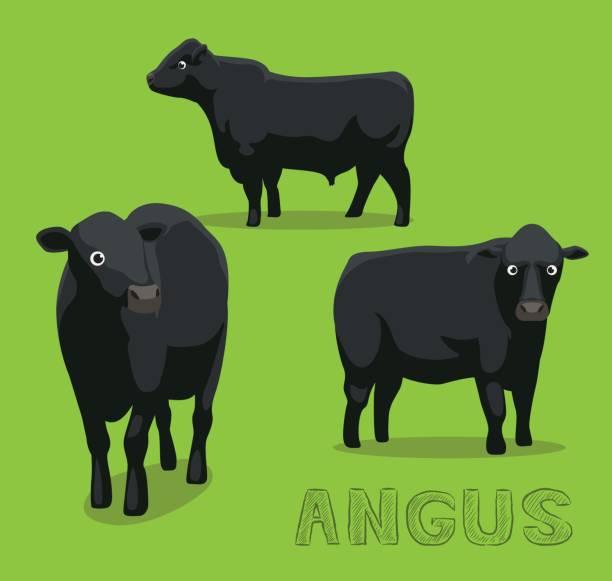 ilustrações de stock, clip art, desenhos animados e ícones de cow angus cartoon vector illustration - beef angus