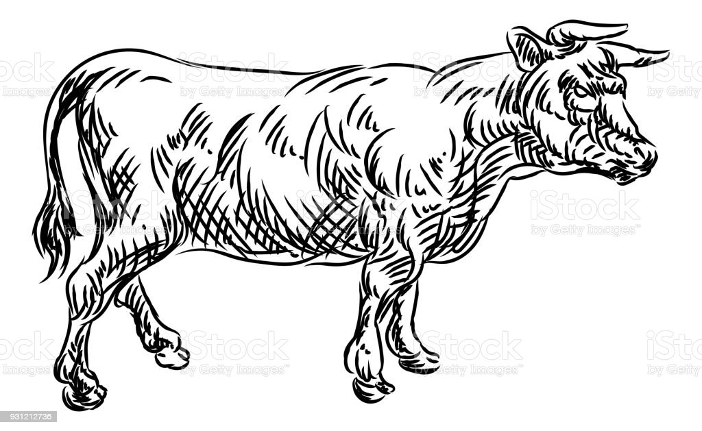 Cow Beef Food Grunge Style Hand Drawn Icon Royalty Free