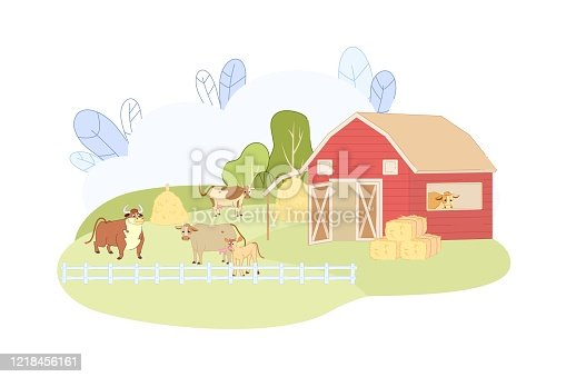 Animal Farm with Red Barn Vector Illustration. Cow Bovine Bull Calf in Corral Fence. Cattle Eating Hay, Graze Organic Green Grass. Meat Livestock Farming. Dairy Milk Product Business
