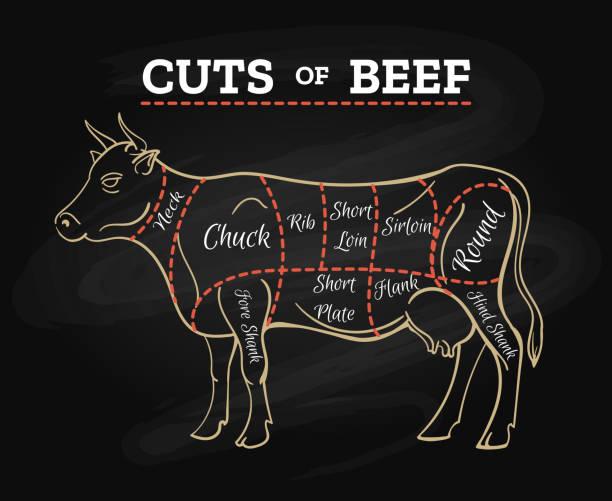 bildbanksillustrationer, clip art samt tecknat material och ikoner med cow slaktare skär nötkött chalkboard system - loin