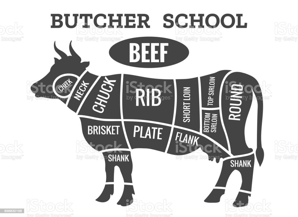 cow butcher diagram vector id898830198 cow butcher diagram stock vector art & more images of agriculture