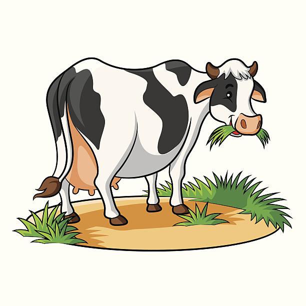 cow comic - lustige kuh bilder stock-grafiken, -clipart, -cartoons und -symbole