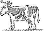 Hand-drawn vector drawing of a Cow. Black-and-White sketch on a transparent background (.eps-file). Included files: EPS (v8) and Hi-Res JPG.