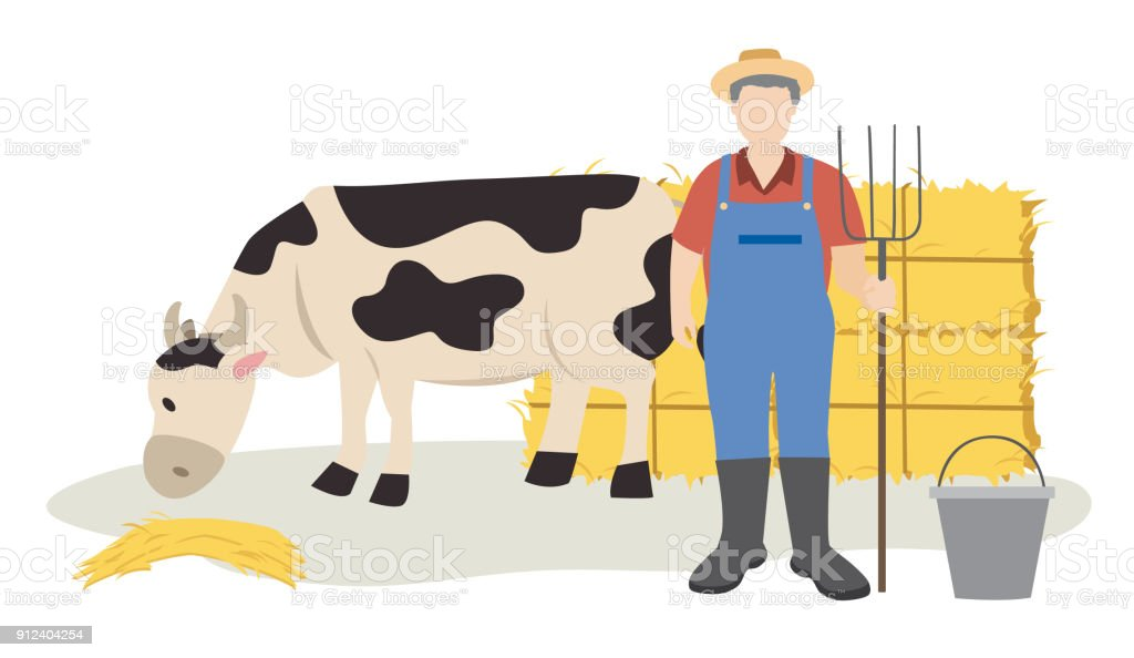 cow eating hay and farmer standing with pitchfork near hay bales