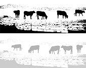 Cow Field Grunge