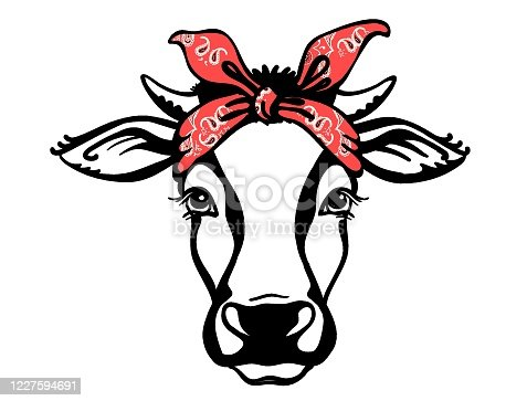Cow head with red bandana. Vector black graphic illustration isolated on white. Farm animal. Cow portrait printable file