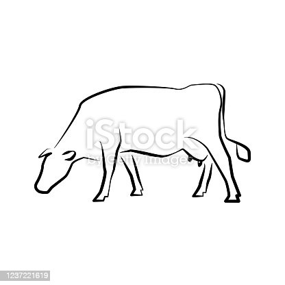 Cow icon. Outline vector illustration. Hand drawn style. Farm animals. Logo of Grazing cow.