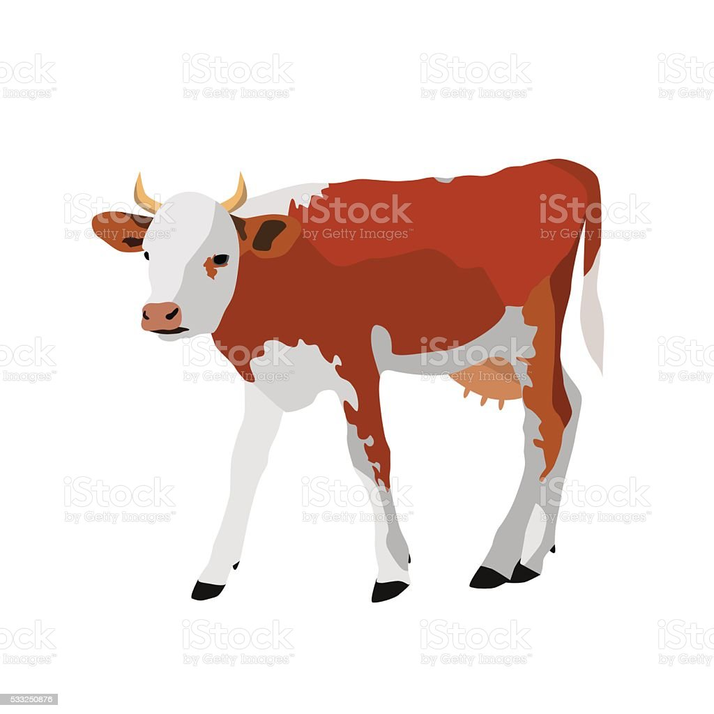 Cow isolated on white background vector art illustration