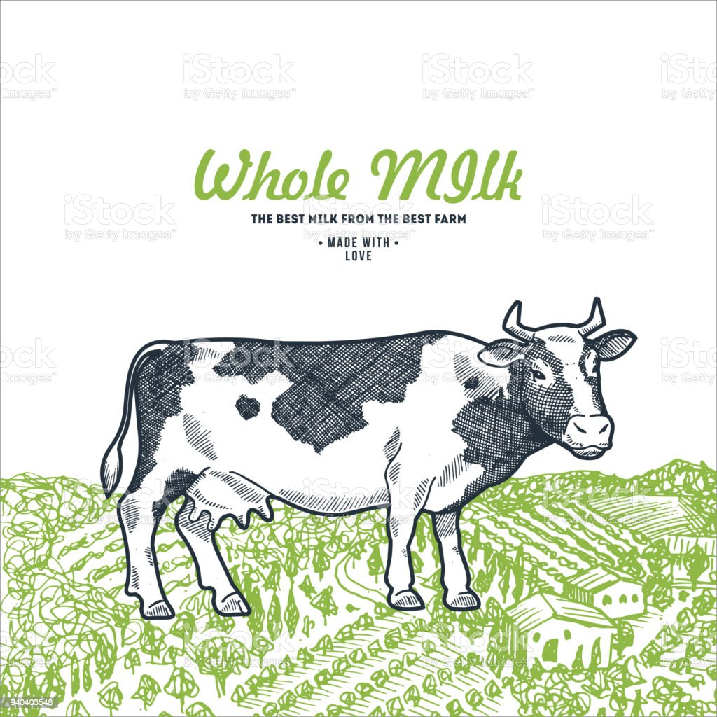 Cow On A Green Field Milk Design Template Vector Illustration Stock ...