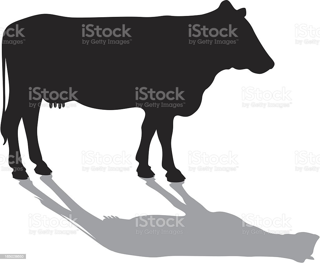Cow silhouette and shadow royalty-free stock vector art