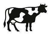 istock Cow 1003189938