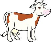 Vector cartoon of a cow isolated on white background.