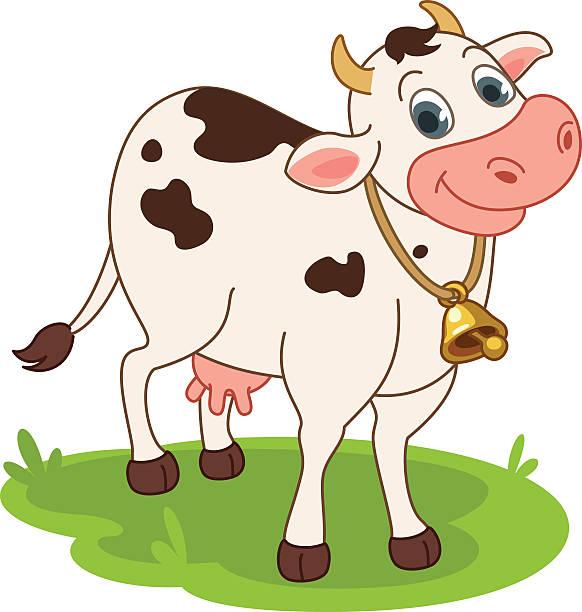 cow  - lustige kuh bilder stock-grafiken, -clipart, -cartoons und -symbole