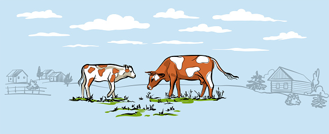 Cow with calf walking on the lawn in the background of the village. Stylish horizontal illustration in a delicate blue color. For packaging design. Vector
