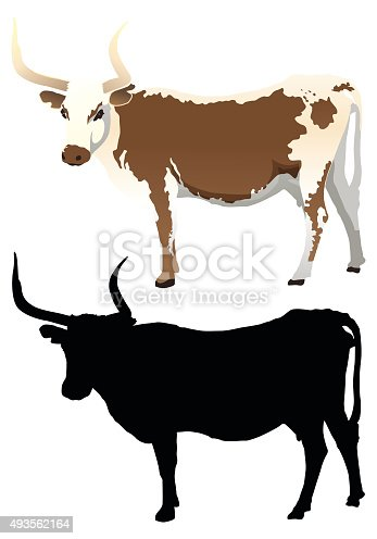 A vector illustration of a longhorn cow. Complete with a nice silhouette.