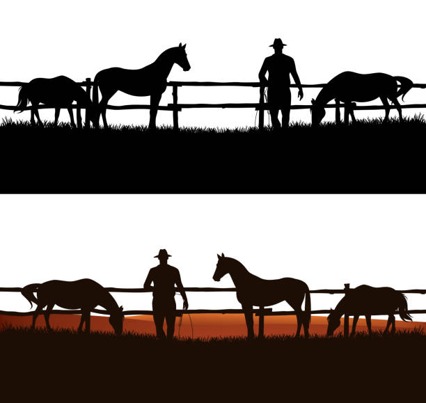 cowboy rancher and grazing horse herd vector silhouette outline cowboy and horse herd behind wooden fence - grazing animals and rancher vector silhouette design paddock stock illustrations