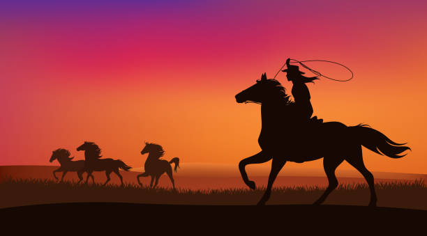 cowgirl and mustang horses herd vector scene beautiful cowgirl chasing a herd of wild mustang horses at sunset - silhouette lanscape vector design rancher illustrations stock illustrations