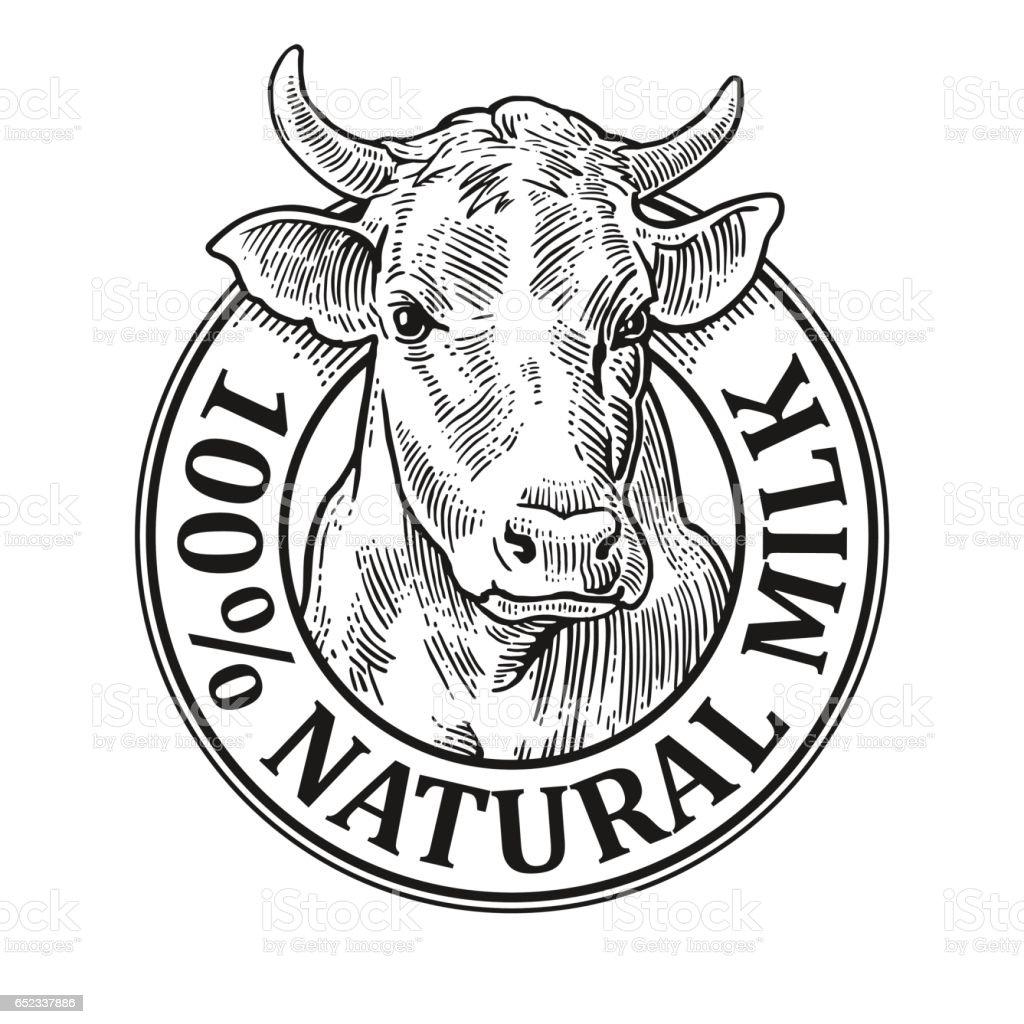 Tête de vache. 100 % naturel du lait. Gravure de vector Vintage - Illustration vectorielle