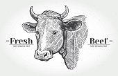 """Cows head, hand drawn in a graphic style. With the words """"Fresh beef""""."""