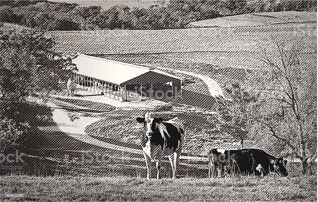 Cows In A Valley Farm vector art illustration