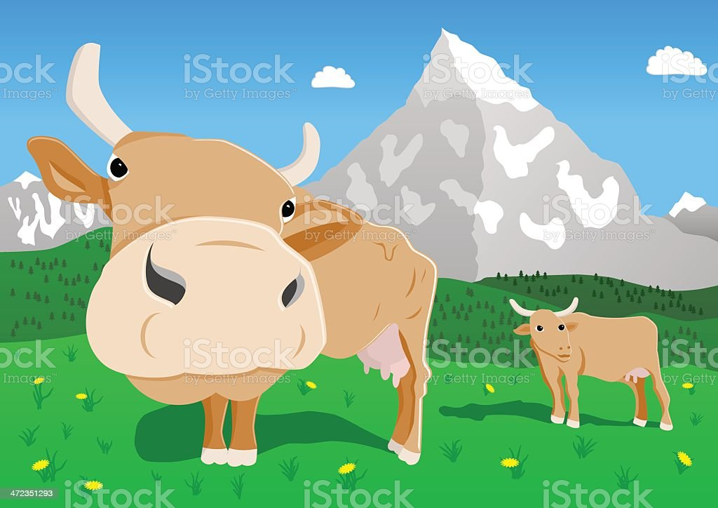 cows in the alps vector art illustration