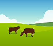 Cows on Green Field Pasture. Vector Landscape Illustration of Sunny Day on Farm