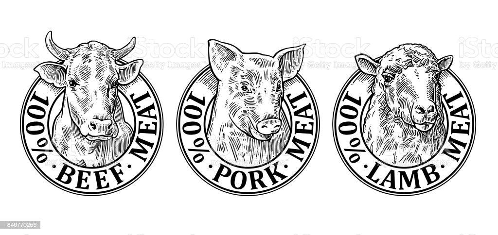 Cows, pig, sheep head. 100 percent beef pork lamb meat lettering vector art illustration