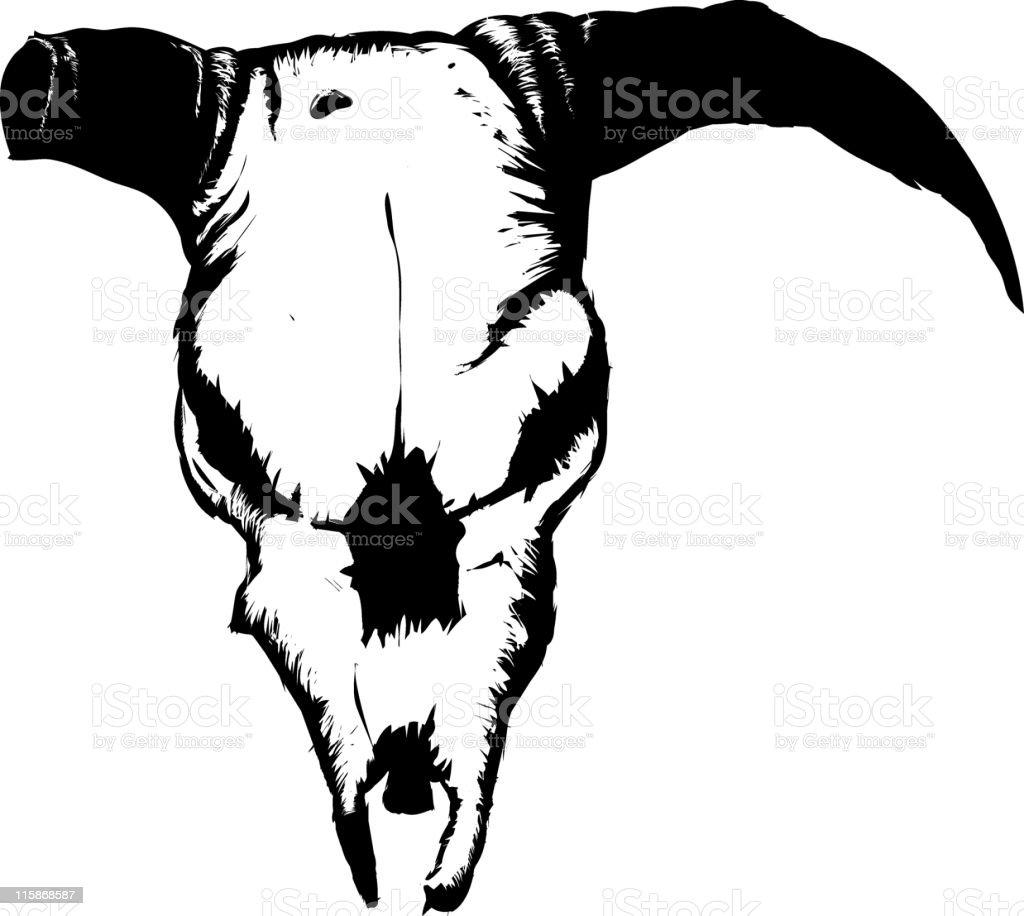 cow's skull royalty-free stock vector art