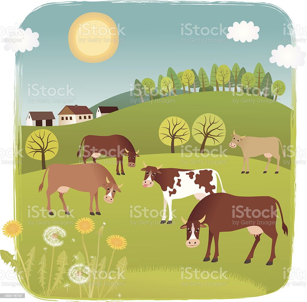 Cows royalty-free stock vector art