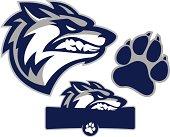 istock Coyote Mascot Pack 165908537