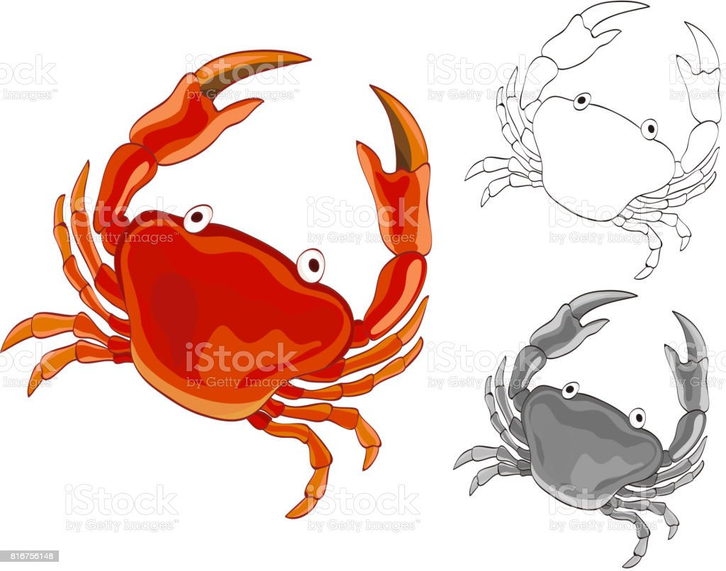 Crab Drawing With Grayscale And Coloring Page Versions Vector ...