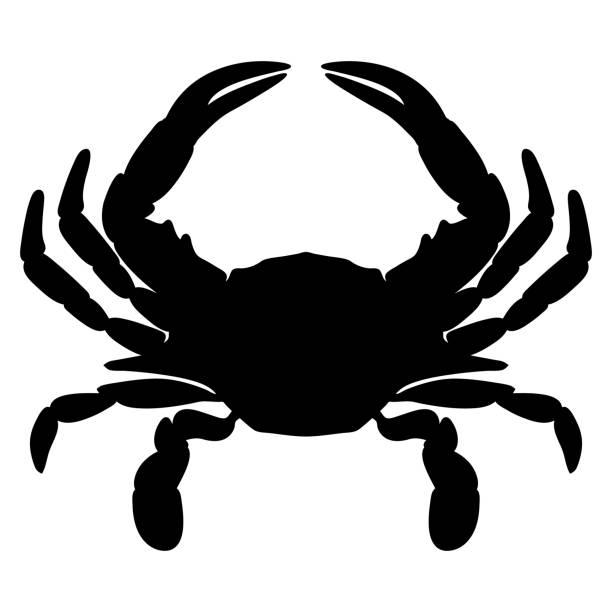 stockillustraties, clipart, cartoons en iconen met krab silhouet geïsoleerd vector illustratie - blauwe zwemkrab
