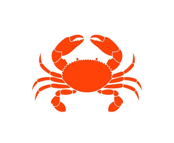 bildbanksillustrationer, clip art samt tecknat material och ikoner med krabba symbol isolerade krabba på vit bakgrund - krabba