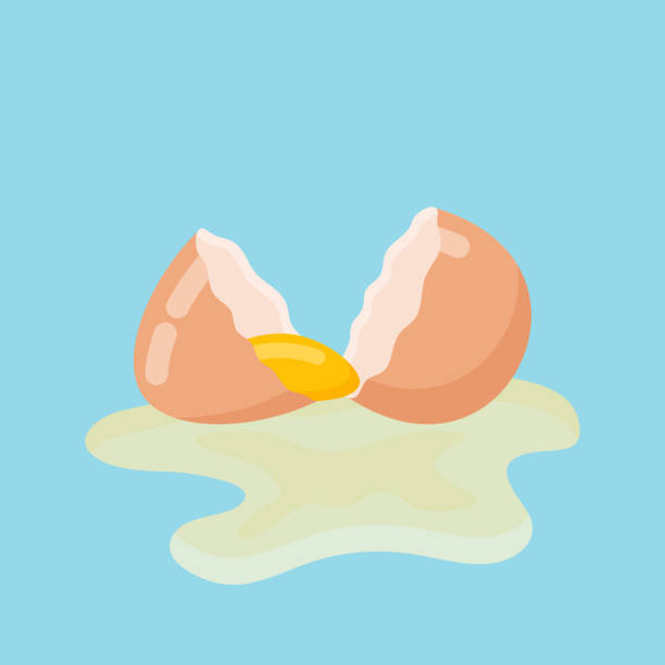 cracked egg with shell and yolk. vector illustration. - egg stock illustrations