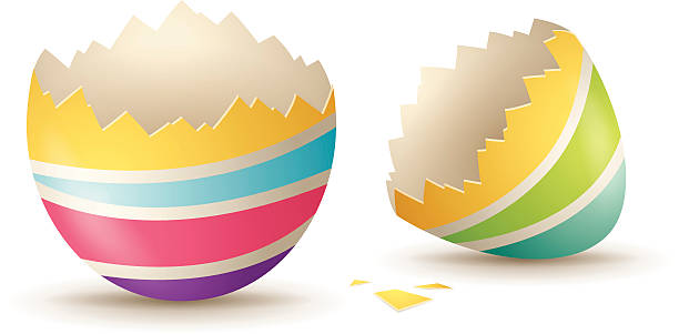 stockillustraties, clipart, cartoons en iconen met cracked eggshell - egg