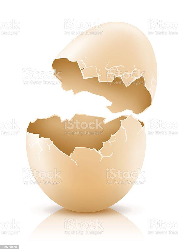 cracked hen's egg vector art illustration