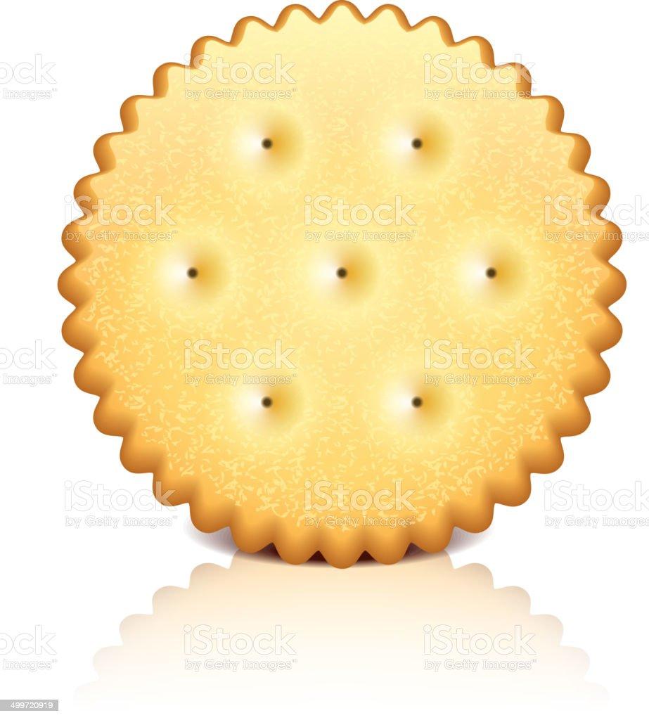 Cracker cookie vector illustration vector art illustration