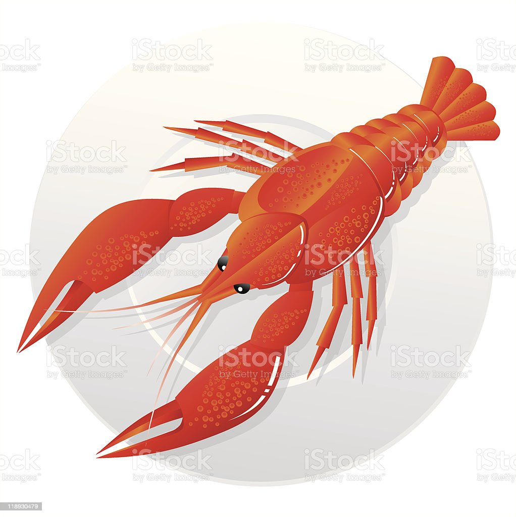 crawfish on a plate royalty-free stock vector art