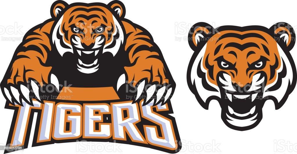 crawling tiger vector art illustration