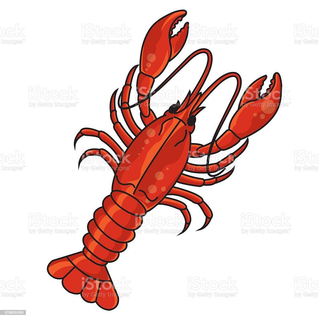 Crayfish vector art illustration