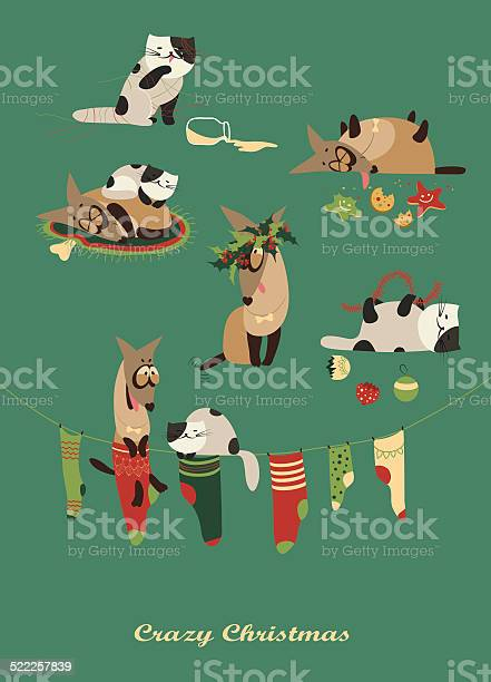 Crazy dog and melancholic cat celebrating christmas vector id522257839?b=1&k=6&m=522257839&s=612x612&h=sj4kc4bmz dg1v671mavdlj0rjulau5wse1lqpf thm=