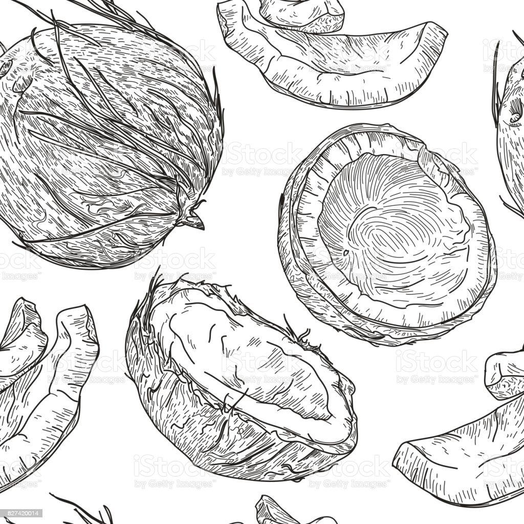 Crazy for Coconuts Pattern vector art illustration